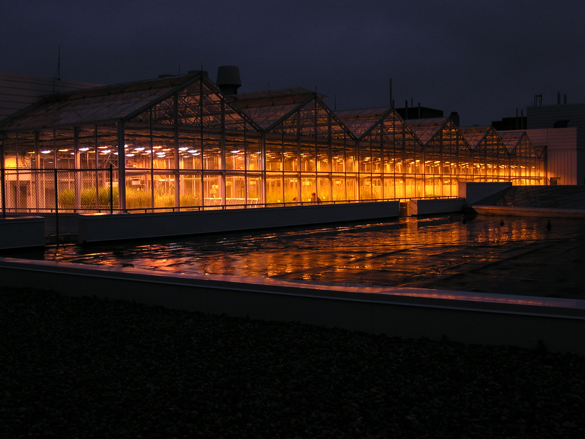 Exterior picture of greenhouse at night with all lights on
