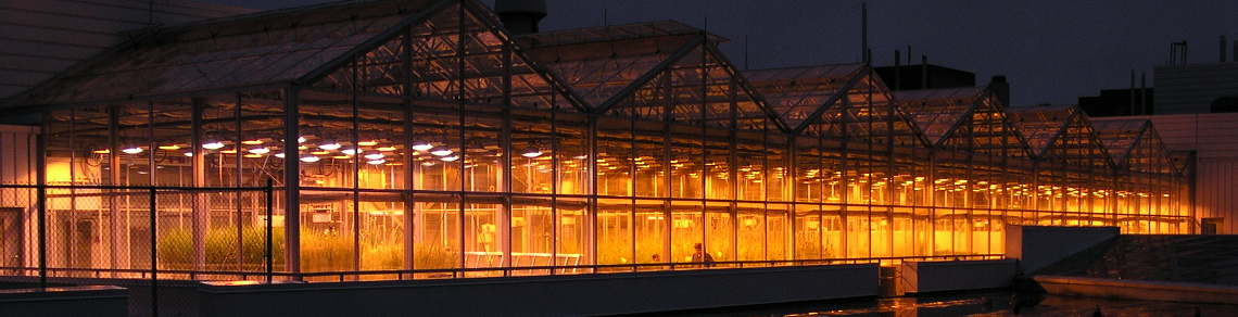 Image of the Phytotron's greenhouse at night