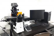A picture of the Nikon Eclipse Ti2 inverted microscope with accessory equipment and computer
