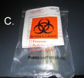 Biohazard submission bag, submission form in proper pocket