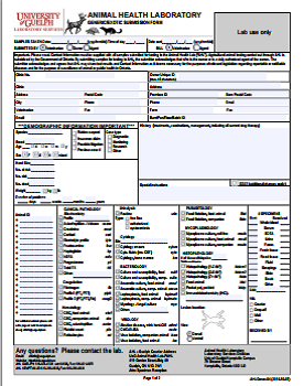 Example of AHL submission form