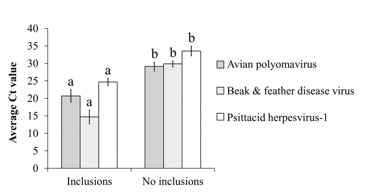 Figure 2. Average Ct values of samples from birds with and without viral inclusion bodies in psittacine birds diagnosed with viral infection by rtPCR (n = 61). For each virus, different letters indicate significant differences using 2-tailed t-tests.