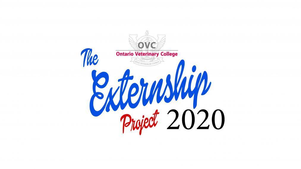 VCP Externship Project 2020 logo