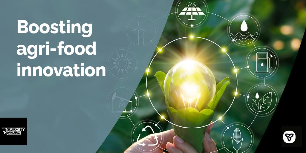 Glowing lightbulb being held in green leaves with icons circling it with text to the left that says Boosting agri-food innovation with the U of G and Ontario logos.
