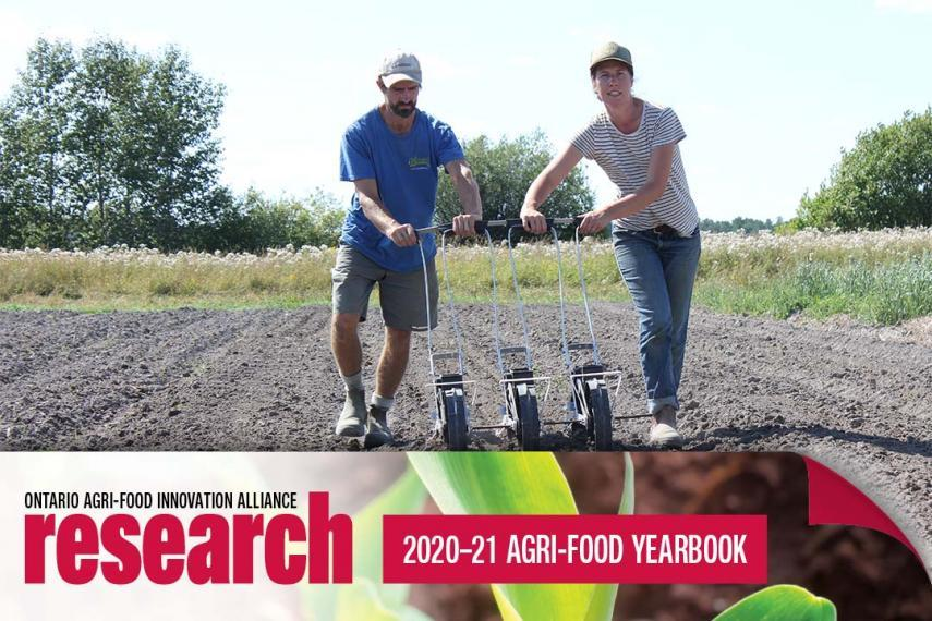 Two farmers in an empty field pushing equipment for tilling the soil, with an icon banner at the bottom that says Ontario Agri-Food Innovation Alliance Research 2020-21 Agri-Food Yearbook