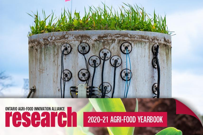 Soil lysimeter with green grass sprouting on the top with a banner icon on the bottom that says Ontario Agri-Food Innovation Alliance Research 2020-21 Yearbook
