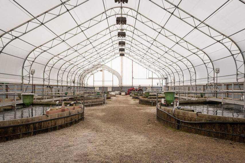 Large fish tanks at the Ontario Aquaculture Research Centre - Alma