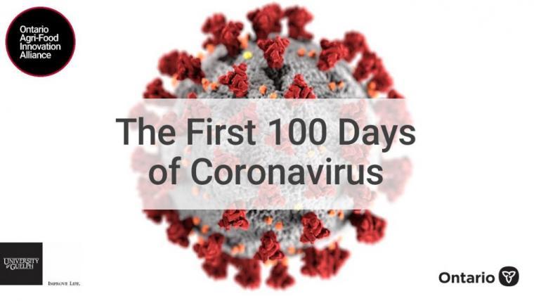 The First 100 days of coronavirus header