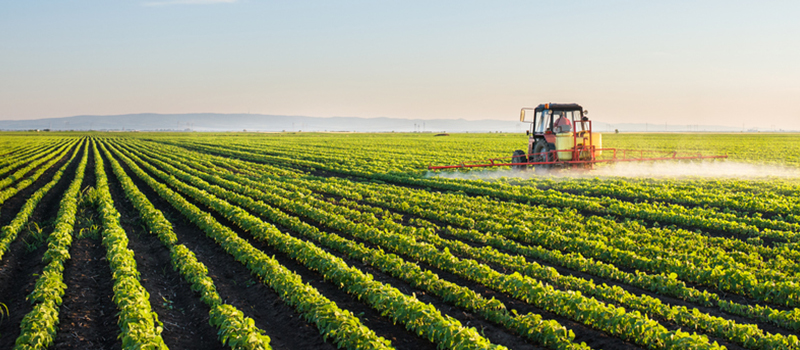 Image of a tractor spraying rows of crops in a field