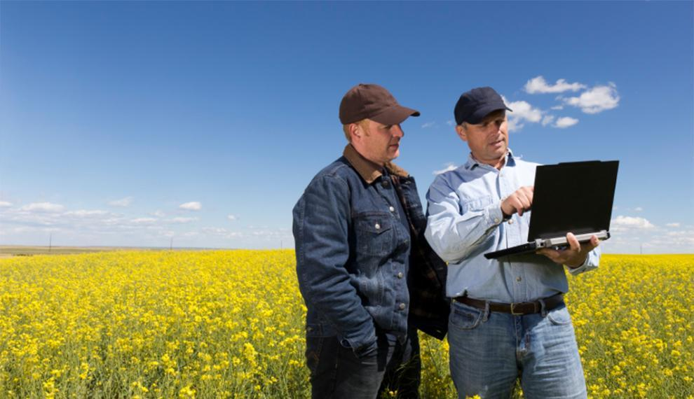 Farmers in a field with a computer