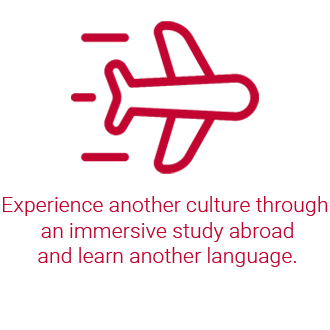 Airplane. Experience another culture through an immersive study abroad and learn another language.