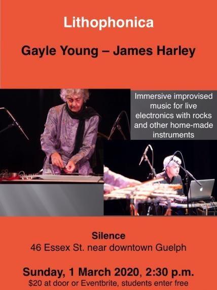 Gayle Young (on left) and James Harley (on right) playing instruments.
