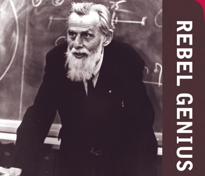 Rebel Genius book cover