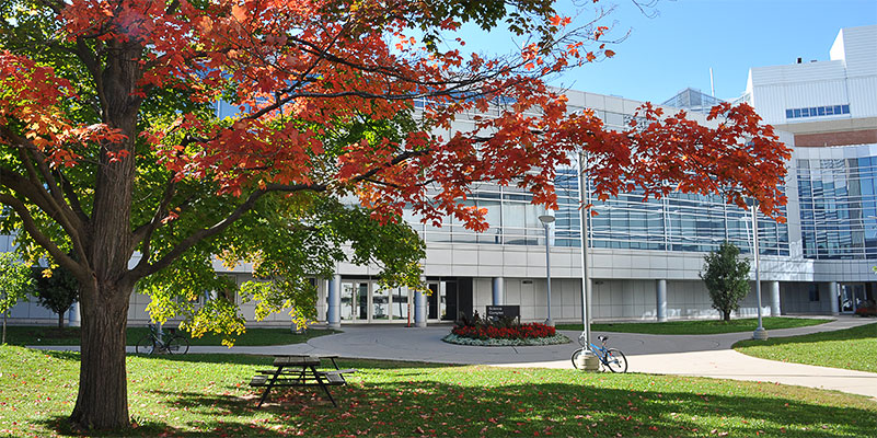 Image of a tree in autumn in front of the Summerlee Science Complex