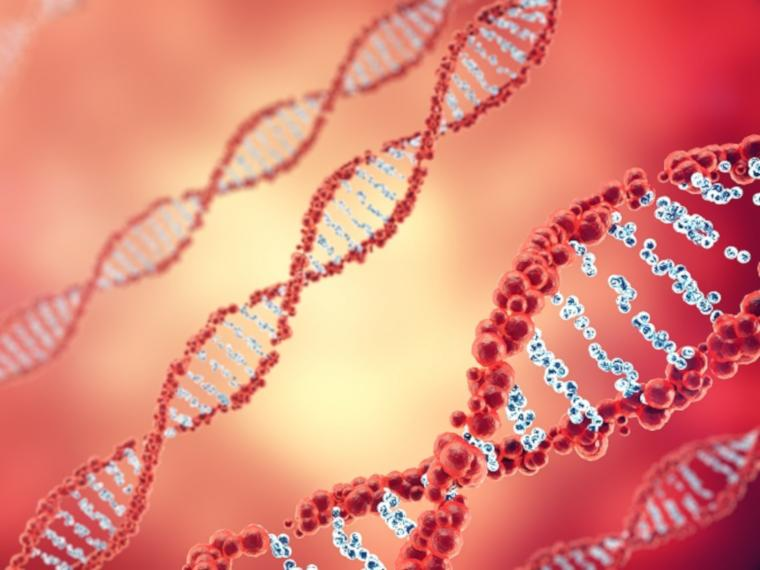 DNA molecule in front of red background