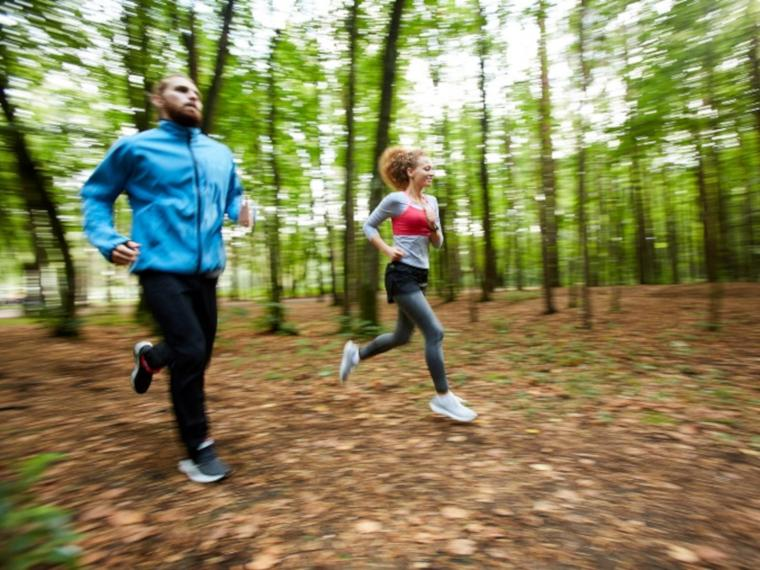 People jogging in a forest