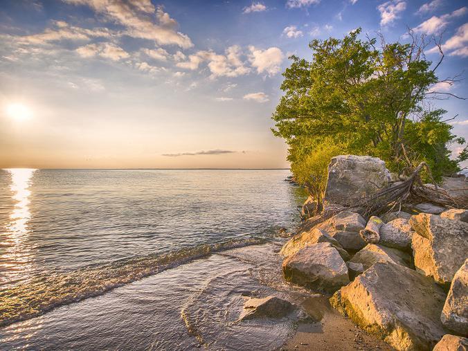 shoreline by a lake