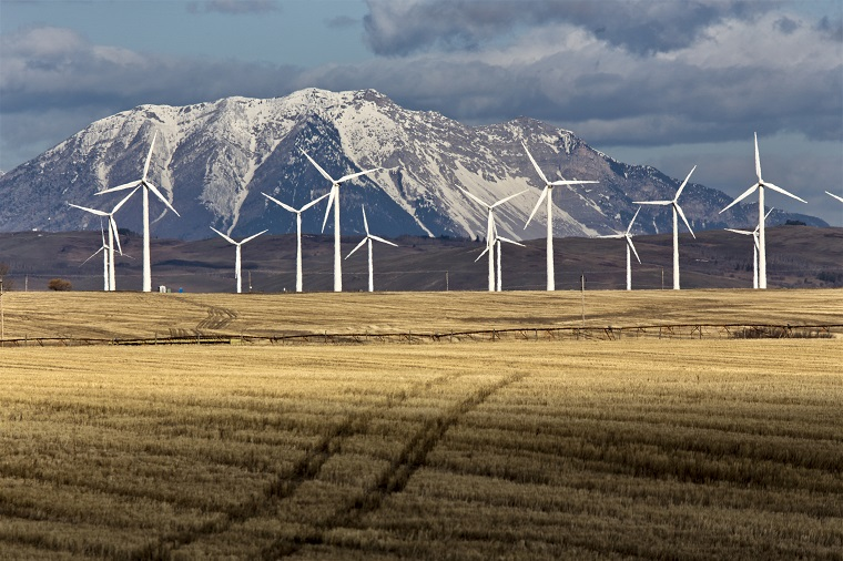Wind farm on field by mountains