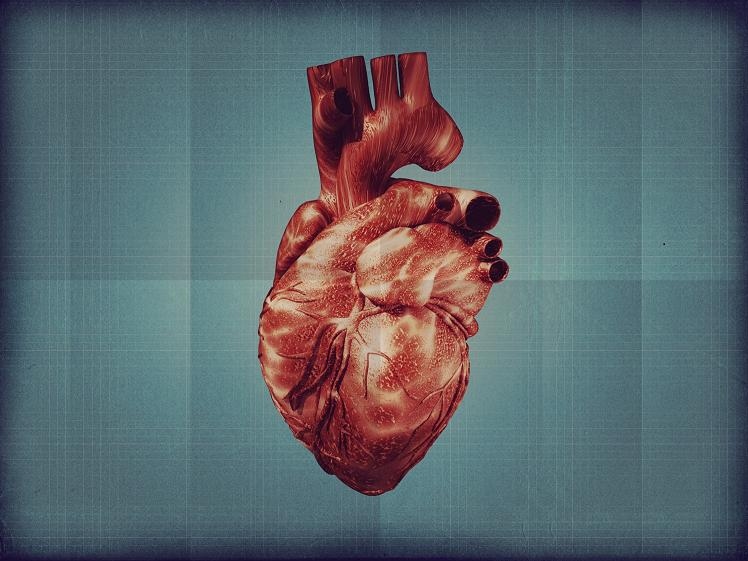 Picture of a Heart
