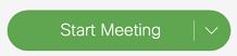 Start Meeting green button