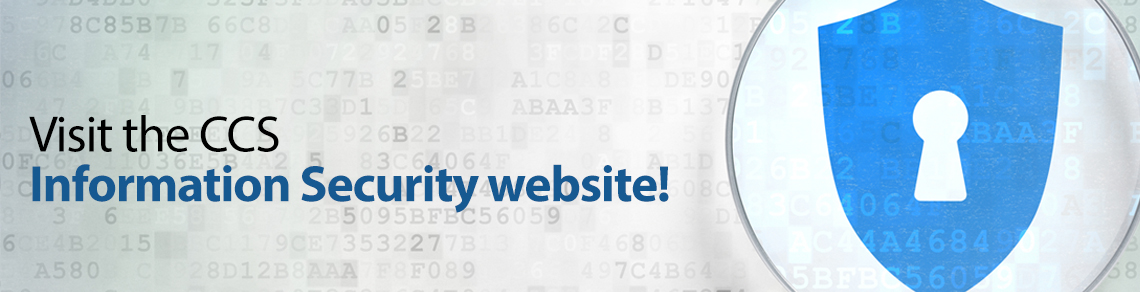 Visit our new Information Security website!
