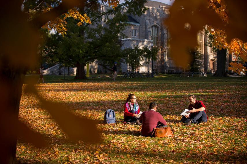 A group of students sitting on grass at the University of Guelph during the fall