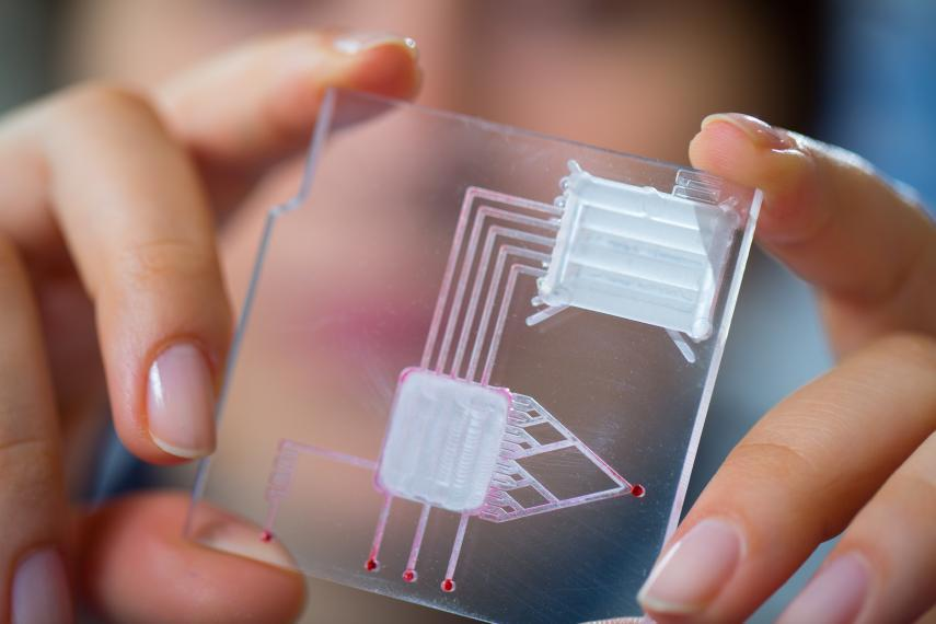 Woman holding up a microfluidic chip