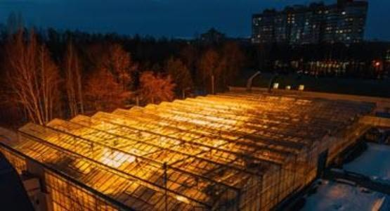 A photo of U of G greenhouses.