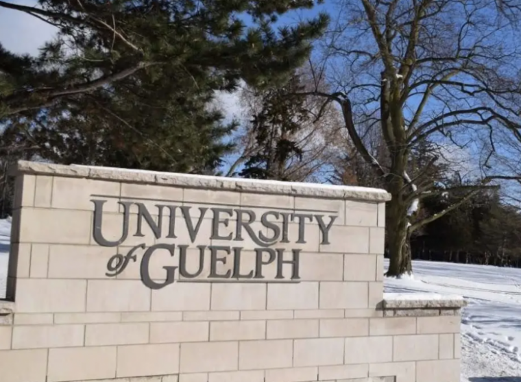 University of Guelph sign and architecture