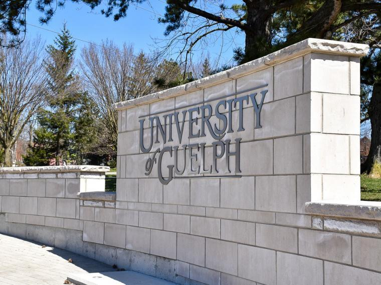 Image of U of G statue and sign