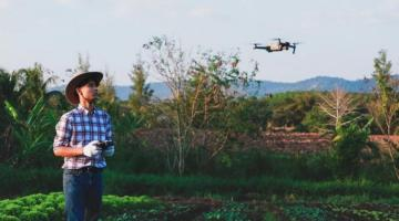 Man stands in agricultural field flying a drone.