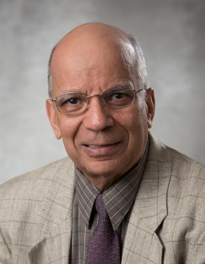 Headshot of Ramesh Rudra
