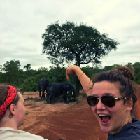 Student spots an Elephant on a Safari tour