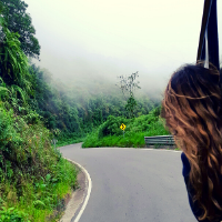 Student looking through the window of a van as they drive through the rainforest in Ecuador