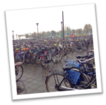 picture of a lot of bicycles