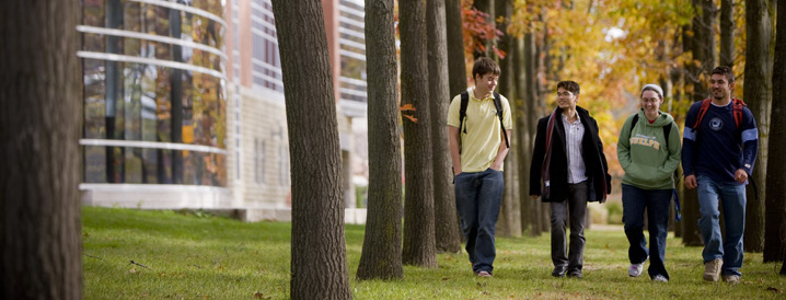 students walking through trees