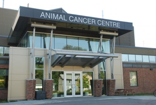 O.V.C. Animal Cancer Centre
