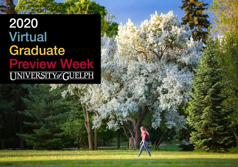 2020 Virtual Graduate Preview Week