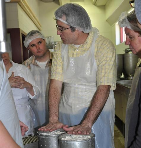 Cheese Making Technology Course Image