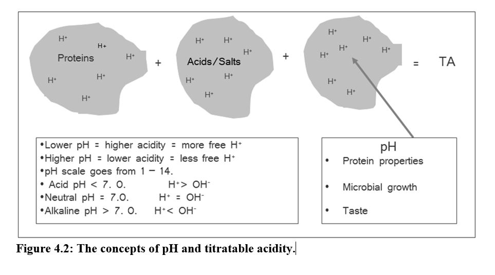 acid citrate dextrose ph