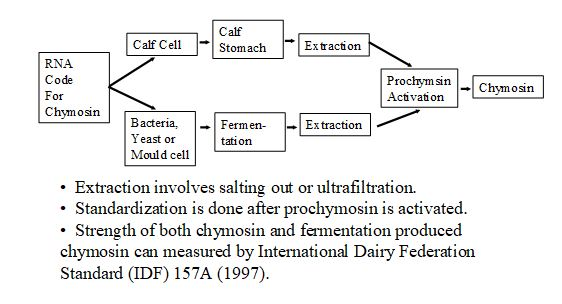 Section D: Acidification and Coagulation