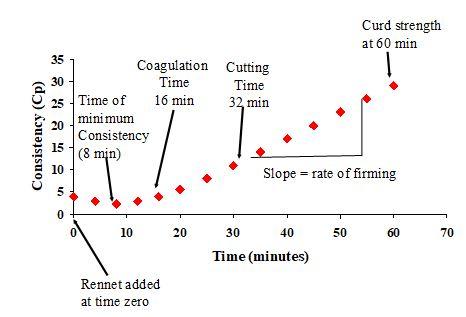 Enzymic Coagulation of Milk | Food Science