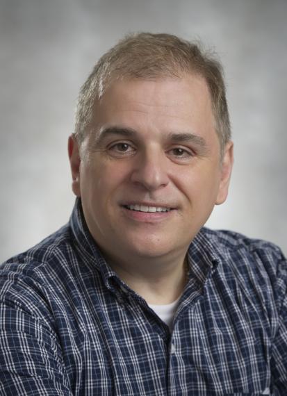 Professor Massimo Marcone
