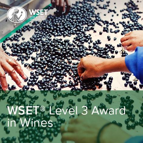 WSET Level 3 Award in Wines logo