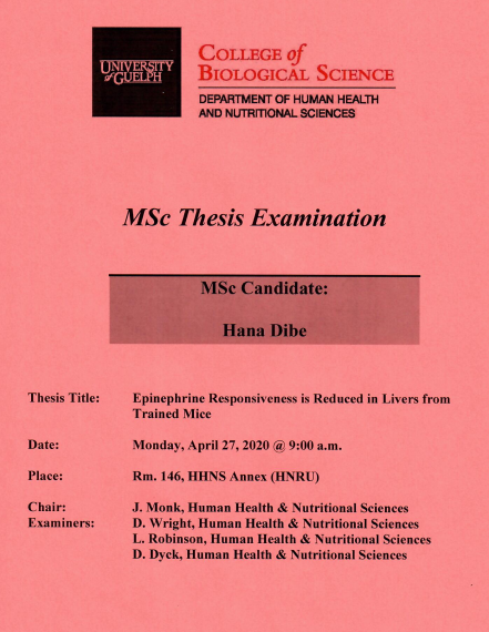 Hana Dibe MSc Thesis Examination Poster