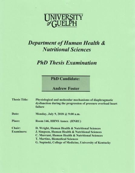 Phd dissertation human resource management
