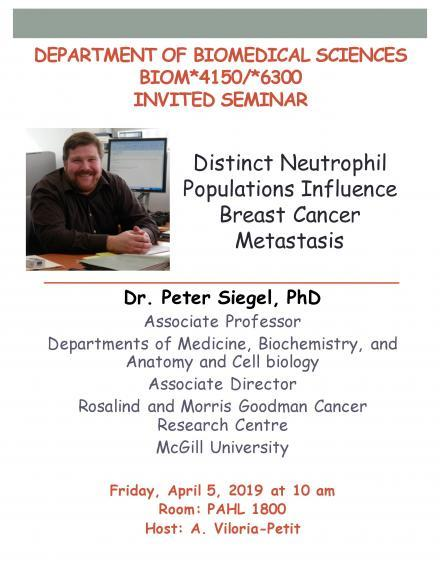 """Poster: """"DEPARTMENT OF BIOMEDICAL SCIENCES BIOM*4150/*6300 INVITED SEMINAR  Distinct Neutrophil Populations Influence Breast Cancer Metastasis  Dr. Peter Siegel, PhD Associate Professor Departments of Medicine, Biochemistry and Anatomy & Cell biology Associate Director, Rosalind and Morris Goodman Cancer Research Centre, McGill University  Friday, April 5, 2019 at 10 am Room: PAHL 1800 Host: A. Viloria-Petit"""""""