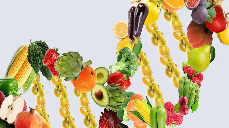 An image of fruit arranged in a DNA strand