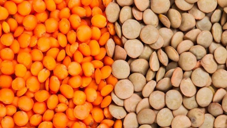 A photograph of lentils