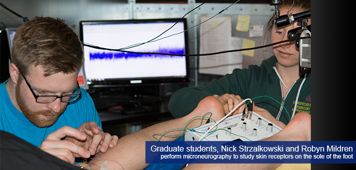 Graduate students Nick Strzalkowski and Robyn Mildren perform microneurography to study skin receptors on the sole of the foot.